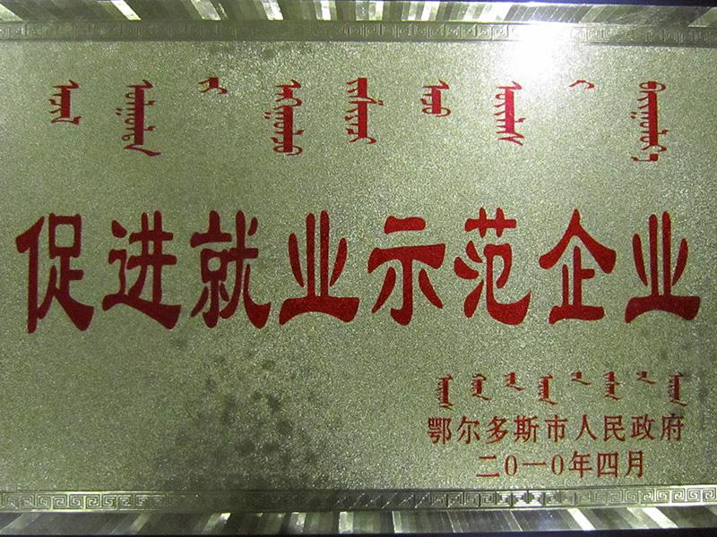 """2010年被鄂尔多斯市人民政府授予""""促进 就业示范企业""""荣誉称号。"""